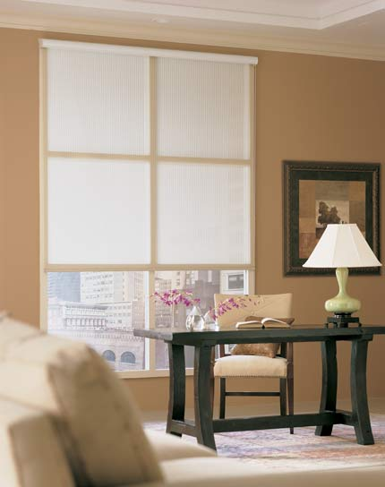 Blinds By Design Roller Shades Window Treatment Idea